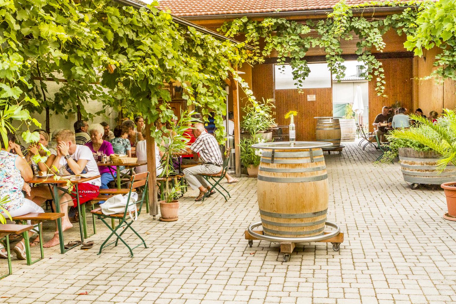 weingut-windisch-gastgarten-1