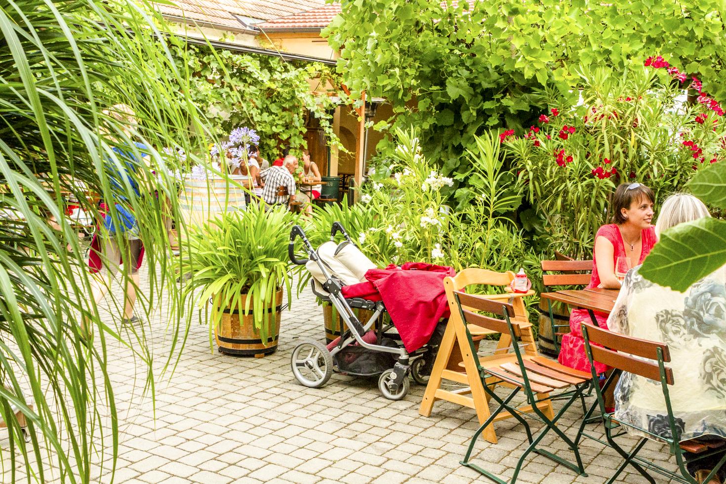 weingut-windisch-gastgarten-2